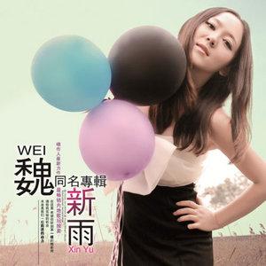 一定要爱你(热度:63)由开心每一天翻唱,原唱歌手魏新雨