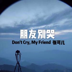 在线听朋友别哭(原唱是张可儿),萍水相逢演唱点播:78次