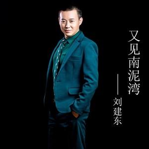 我想你(热度:86)由气质翻唱,原唱歌手刘建东