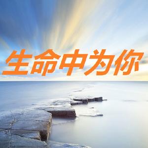 一生跟随(热度:29)由娜娜翻唱,原唱歌手Anlan