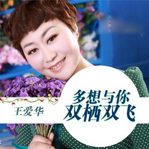 多想与你双栖双飞(热度:44)由不忘初心翻唱,原唱歌手王爱华