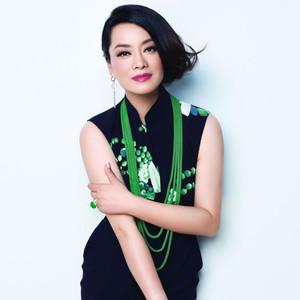 不了情(热度:30)由王细英1翻唱,原唱歌手毛阿敏