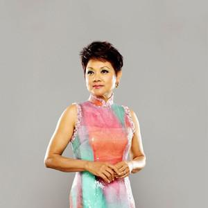 千王之王(热度:54)由不忘初心翻唱,原唱歌手叶丽仪