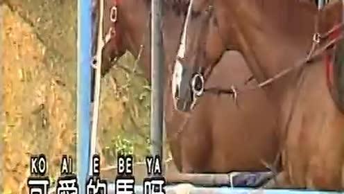 可爱的马 (ktv版)
