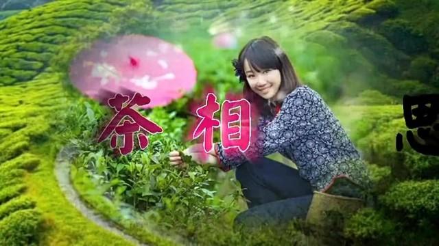茶相思由杨家将杨杨演唱(ag娱乐平台网站|官网:陈瑞)
