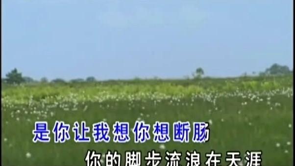 走天涯(Live)(热度:21)由我在红尘中等你翻唱,原唱歌手降央卓玛