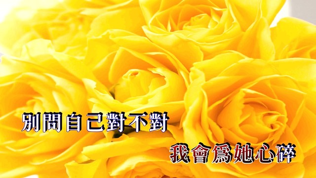黄玫瑰原唱是黄灿,由云淡风轻翻唱(播放:58)