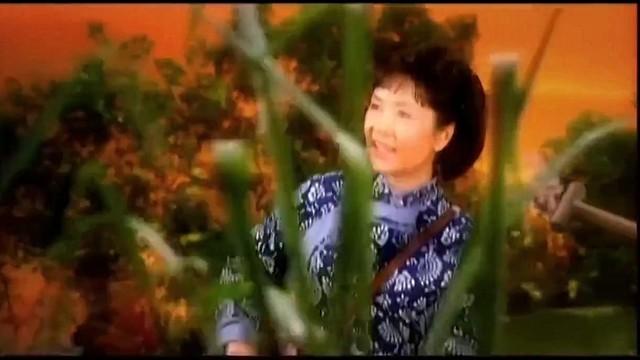 洪湖水浪打浪(热度:21)由乔红翻唱,原唱歌手彭丽媛