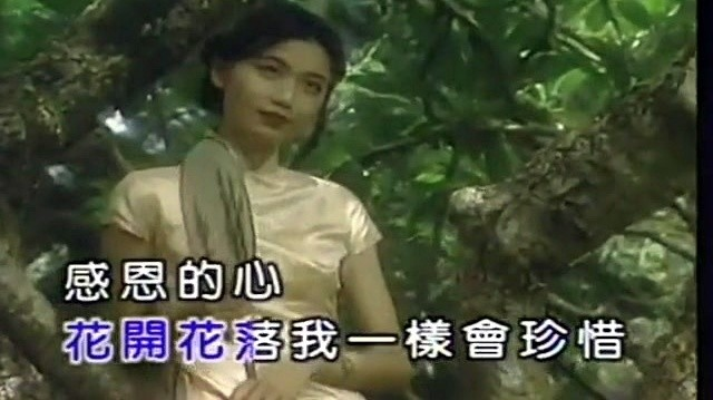 感恩的心(热度:69)由梦想成真翻唱,原唱歌手欧阳菲菲