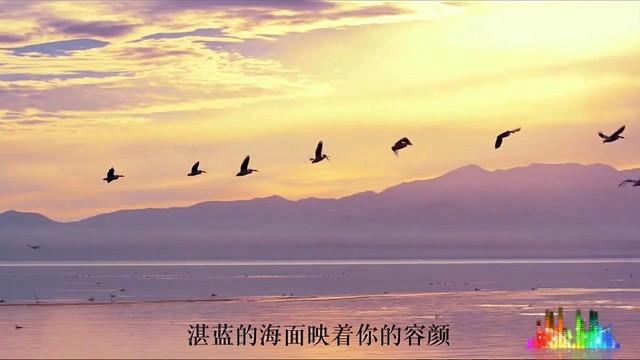 海鸥飞(热度:17)由༄情知足常乐翻唱,原唱歌手龙梅子