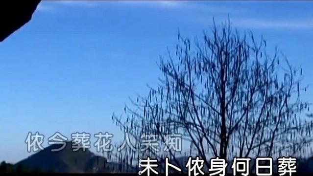 葬花吟(热度:73)由苟淑清|59153o9158翻唱,原唱歌手龚玥