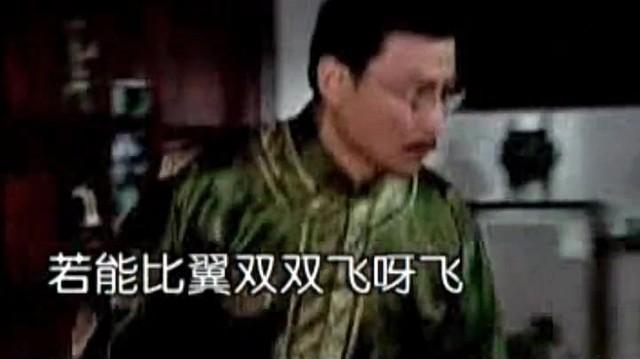 哑巴新娘由雅之音白灵鸟演唱(原唱:李羿慧)