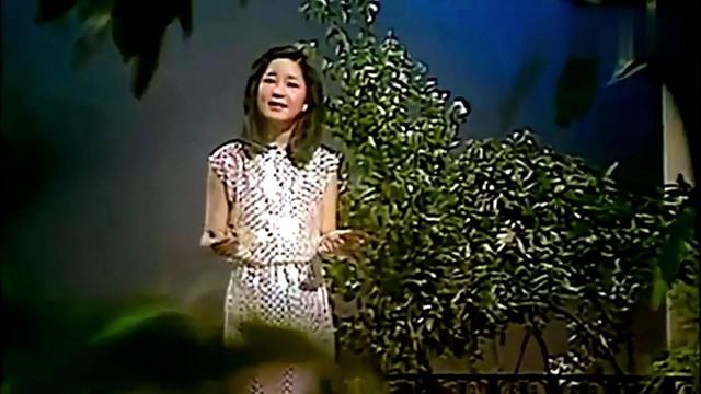 月亮代表我的心(热度:1197)由自由身翻唱,原唱歌手邓丽君