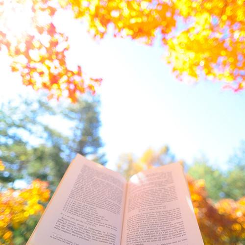 治愈自己原唱是佚名,由健康、快乐、活着!翻唱(播放:39)