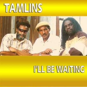 The Tamlins