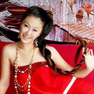 格桑花dj2012年12月网络红歌2