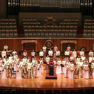 江苏省歌舞团民族乐队