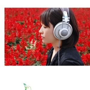 Ephemeral Flowers钢琴谱