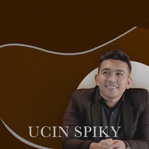 UCIN Spiky