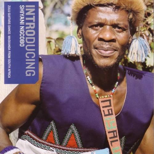 Shiyani Ngcobo