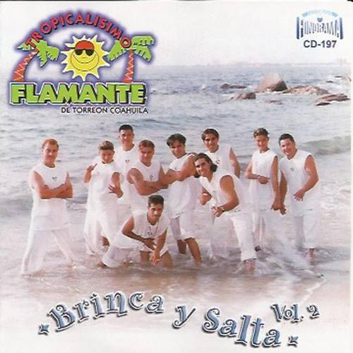 Tropicalisimo Flamente