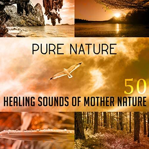 Life Sounds Nature