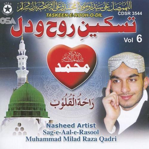 Muhammad Milad Raza Qadri