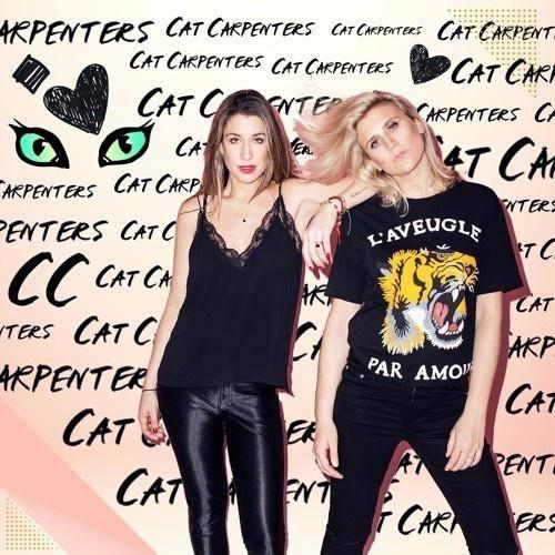 Cat Carpenters