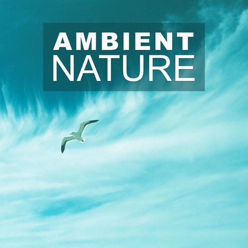 Nature Sound Series