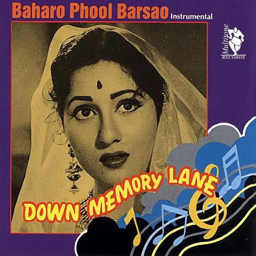 The Bollywood Instrumental Band