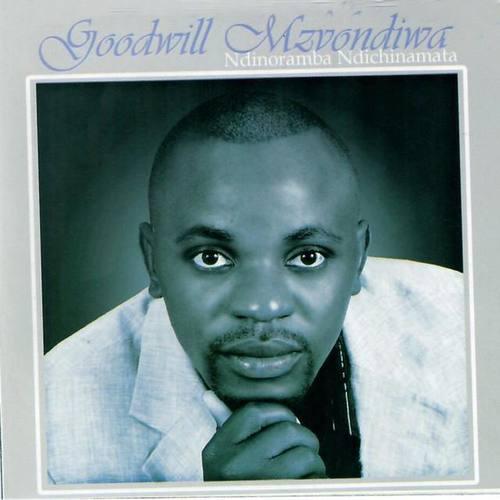 Goodwill Mzvondiwa
