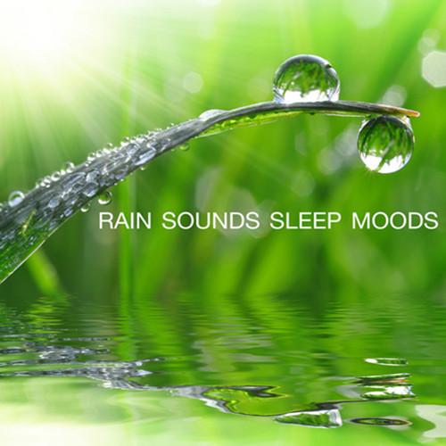 Rain Sounds - Sleep Moods
