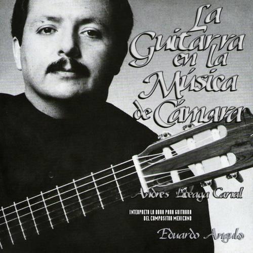 Andrés Liceaga Carral