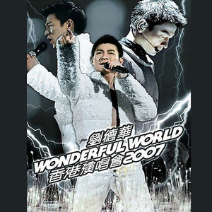 Wonderful World 香港演唱会 2007