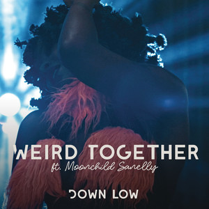 Listen to Down Low song with lyrics from Weird Together