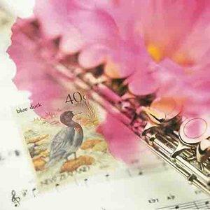 老婆老婆你要乖(热度:15)由yangzuhua翻唱,原唱歌手望海高歌