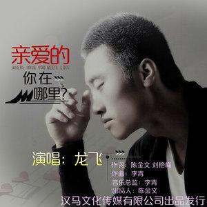 亲爱的你在哪里(热度:20)由yangzuhua翻唱,原唱歌手龙飞/门丽