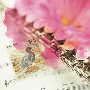 傻妹妹(热度:36)由ZY  俊国久久翻唱,原唱歌手刘尊
