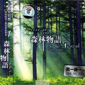 魔幻森林-森林物语 qq音乐-音乐你的生活