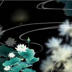 两只蝴蝶原唱是庞龙,由幸运草翻唱(播放:32)