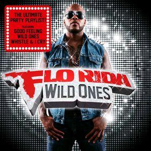 收聽Flo Rida的Wild Ones歌詞歌曲