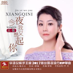 今夜我又想起你(热度:117)由CS湘潇翻唱,原唱歌手王馨