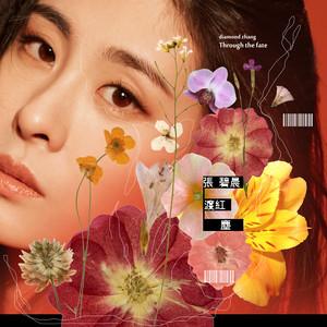 渡红尘(热度:20)由夏夏翻唱,原唱歌手张碧晨
