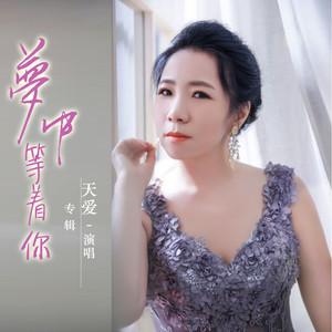 梦中等着你(热度:60)由晨露翻唱,原唱歌手天爱