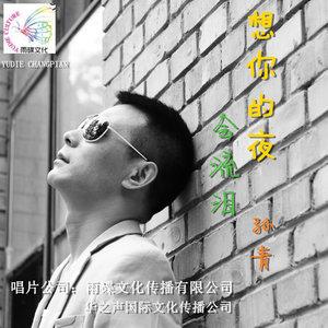想你的夜会流泪(热度:134)由富震翻唱,原唱歌手孙青