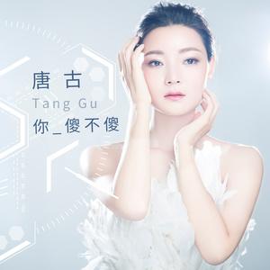 你傻不傻(热度:43)由ys尚影4045980579翻唱,原唱歌手唐古