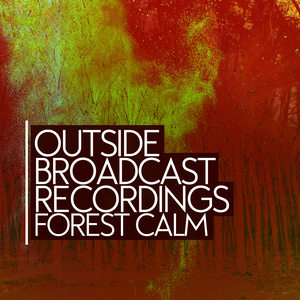 Outside Broadcast Recordings: Forest Calm