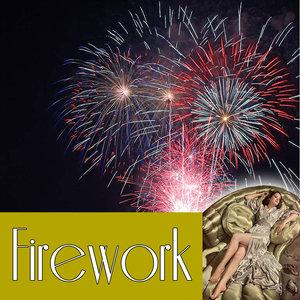 firework 2011 single