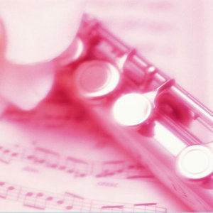 九百九十九朵玫瑰(Live)原唱是邰正宵,由大海翻唱(播放:22)