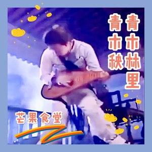 青木林里青木秧(抖音纯音乐加长版)